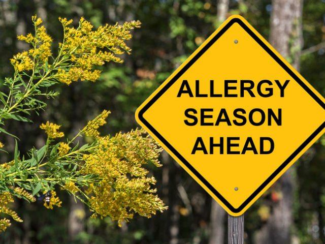 Sinusitis Versus Allergic Rhinitis