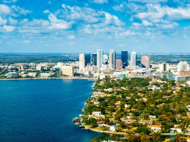 Why Are Mold Allergies on the Rise in Tampa?